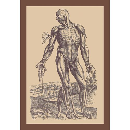Buyenlarge Fourth Plate of the Muscles Graphic Art on Canvas