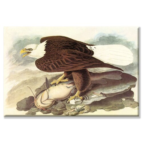 Buyenlarge Bald Eagle 2 Graphic Art on Canvas