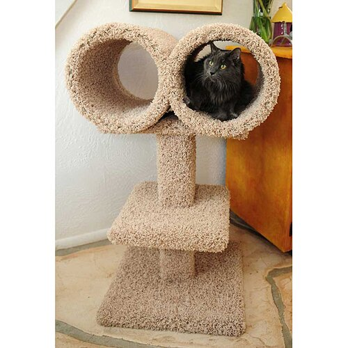 Double Tunnel Cat Perch