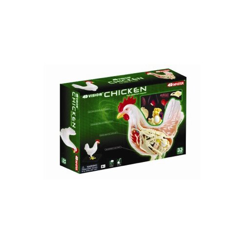 Tedco Toys 4D Vision Chicken Anatomy Model