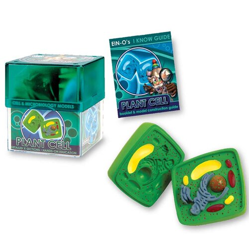 10 Piece Plant Cell Model Set