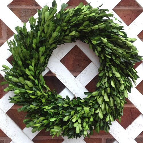 Mills Floral Boxwood Garden Wreath
