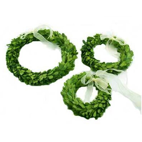 Mills Floral Boxwood Wreath Set Round with Ribbon