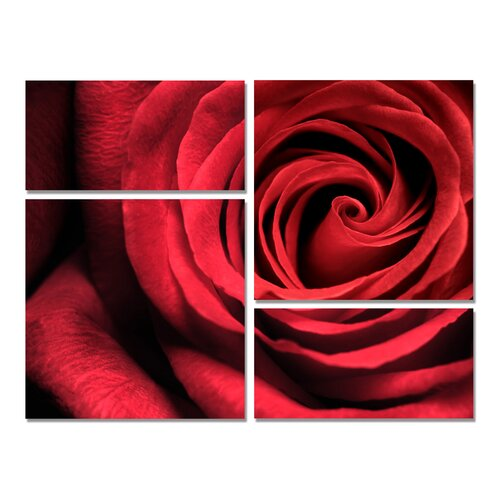 Romantic Rose Modern 4 Piece Photographic Print