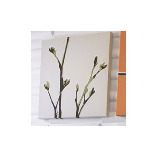 Inhabit Botanicals Axis Stretched Graphic Art on Canvas in Grass