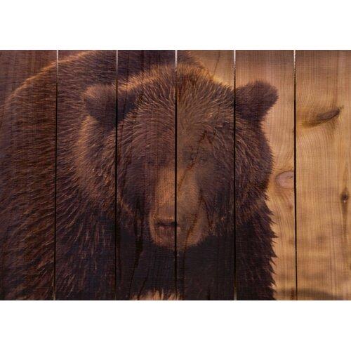 Big Bear Photographic Print