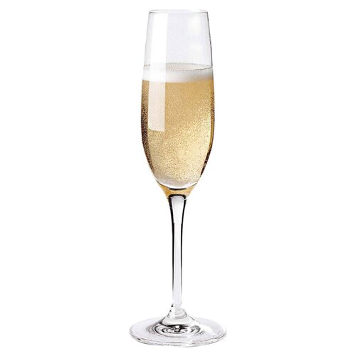 Fusion Champagne Coupe Glass (Set of 4)