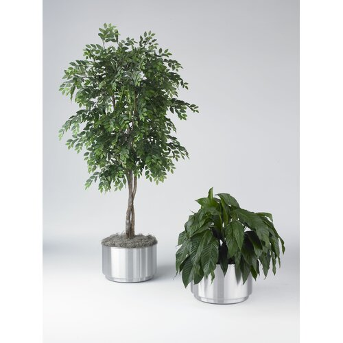 Toledo Metal Spinning Cleanline 39 Gallon Stainless Steel Planter
