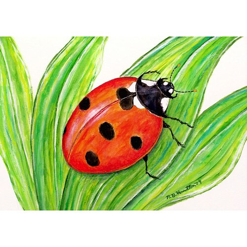 Garden Lady Bug Door Mat
