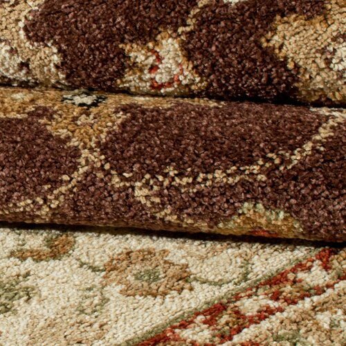 Orian Rugs Inc. Four Seasons Shazad Café Au Lait Indoor/Outdoor Rug