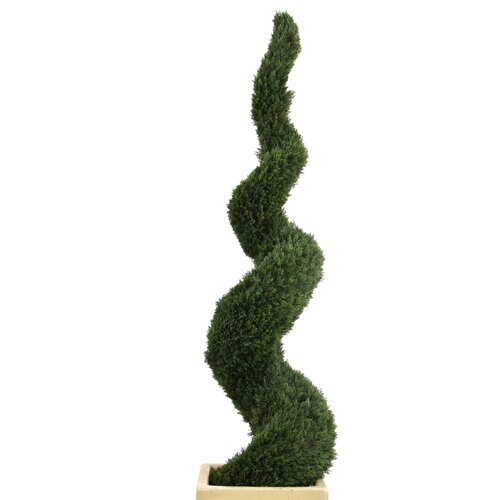 Spiral Cedar Topiary in Square Anthracite Concrete-Lite Planter