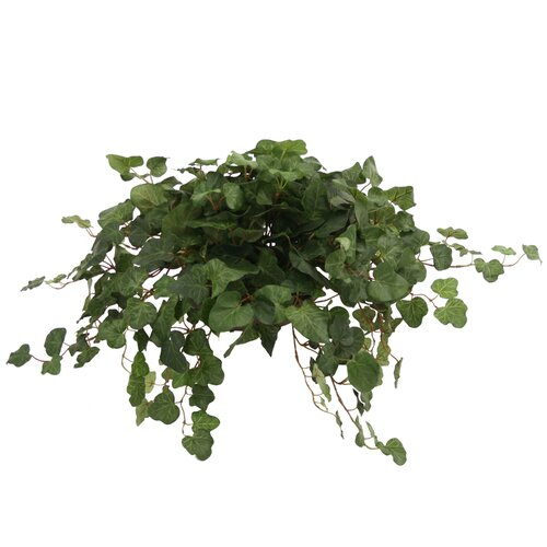 Distinctive Designs Topper with Silk Swedish Ivy Hanging Plant in Planter
