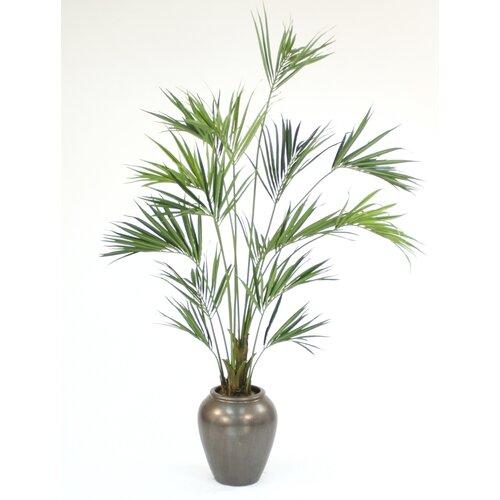 Distinctive Designs Kentia Palm Tree in Decorative Vase