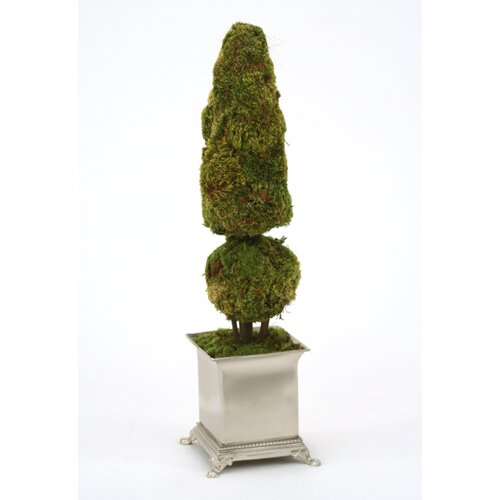 Cone and Ball Moss Topiary in Planter