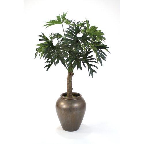 Distinctive Designs Philodendron Selloum in Planter