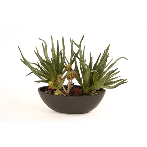 Distinctive Designs Silk Greenery - Succulent Garden Floor Plant in Pot
