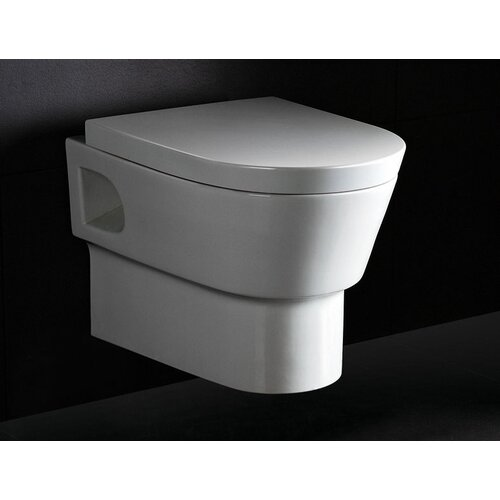 EAGO Square Modern Dual Flush Elongated Toilet 1 Piece