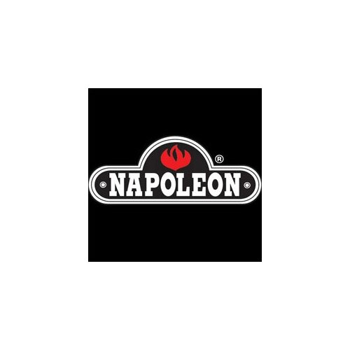 Napoleon Black Thurmalox Paint