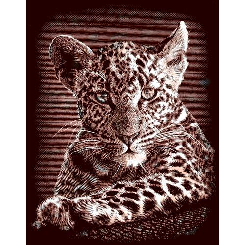 Reeves Oasis Leopard Cubs Scraperfoil