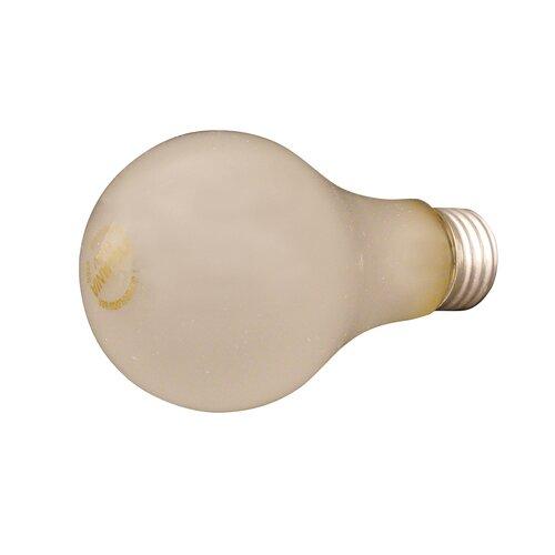 Speedball 250W Light Bulb
