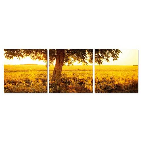 Prairie 3 Piece Photographic Print Set