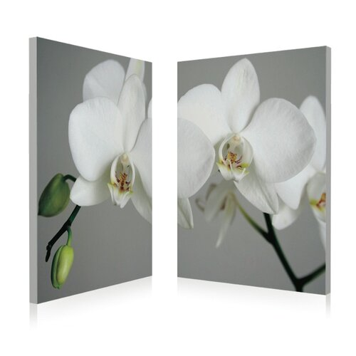 Artistic Bliss White Orchid 2 Piece Photographic Print Set