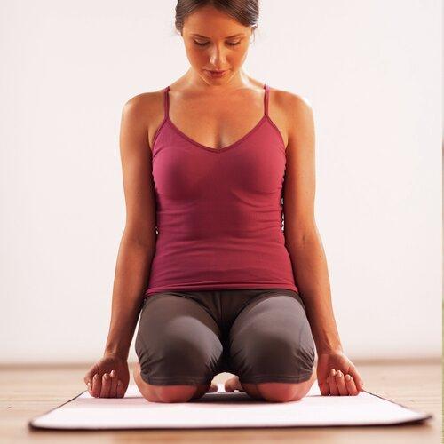 Merrithew Hot Yoga Plus Mat Amp Reviews Wayfair