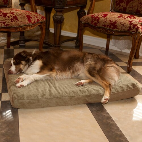 Orthopedic Super Foam Dog Pillow