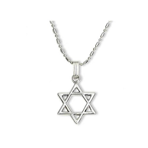 Newport Sterling Sterling Silver Star of David Necklace