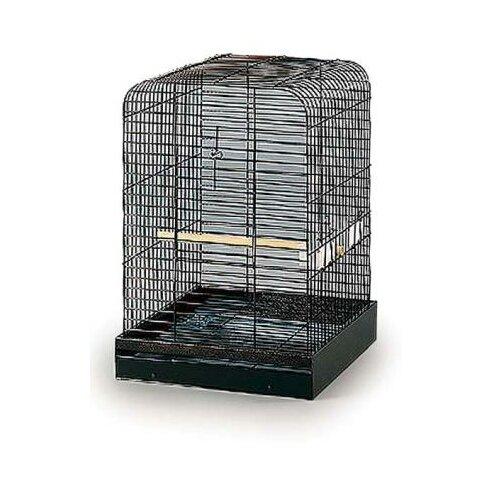 Prevue Hendryx Parrot Bird Cage Amp Reviews Wayfair