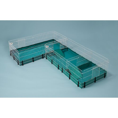 cage can you connect 2 midwest guinea habitat plus cages