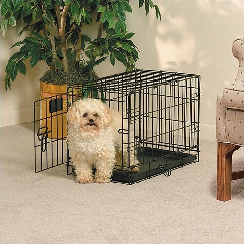 Midwest Homes For Pets Life Stages Fold and Carry Single Door Pet Crate