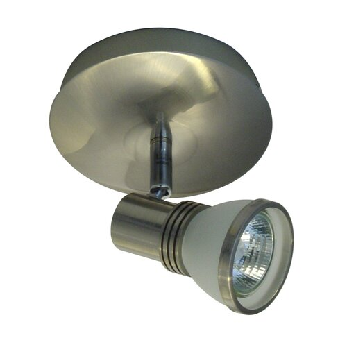 Accent 1 Light Ceiling Spot Light