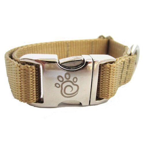 Chief Furry Officer Solid Webbing Dog Collar