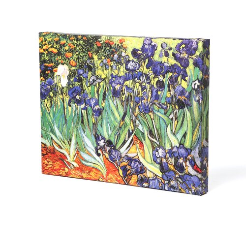 Art Wall ''Irises in the Garden'' by Vincent Van Gogh Original Painting on Canvas
