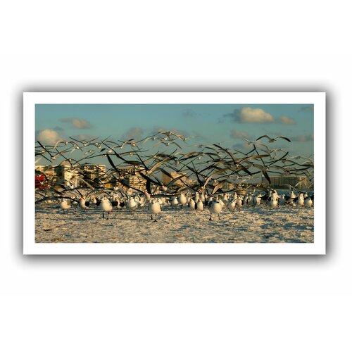 Art Wall 'Crazy Birds, Siesta Key' by Lindsey Janich Canvas Poster