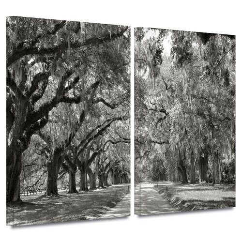 'Live Oak Avenue' by Steve Ainsworth 2 Piece Gallery-Wrapped Canvas Art Set