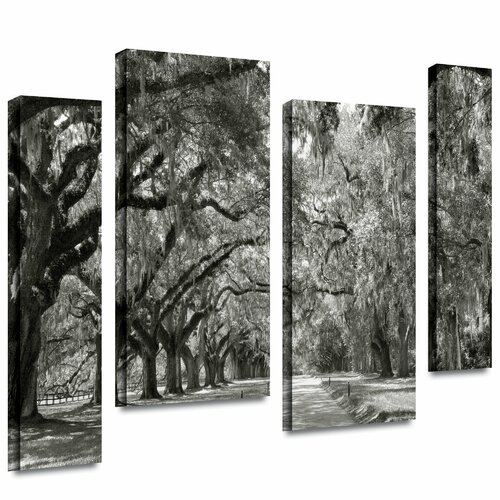 'Live Oak Avenue' by Steve Ainsworth 4 Piece Gallery-Wrapped Canvas Art Set