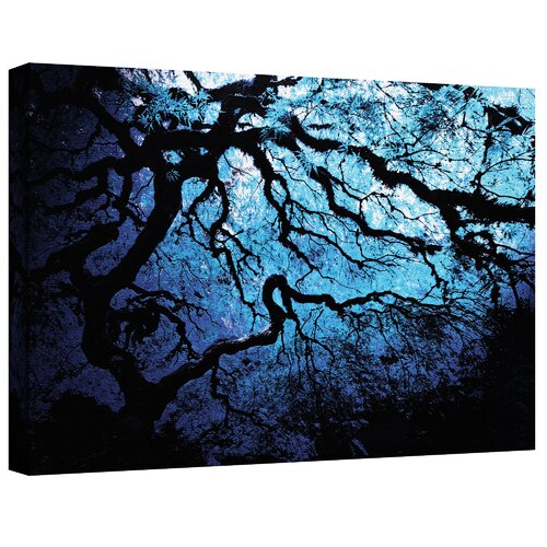 ''Japanese Ice Tree'' by John Black Photographic Print Canvas