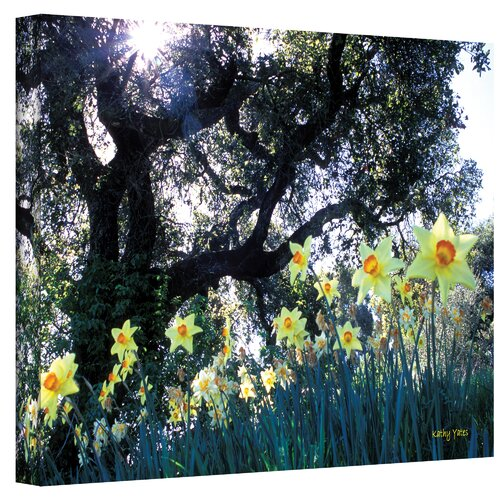 ''Daffodils and The Oak'' by Kathy Yates Photographic Print on Canvas
