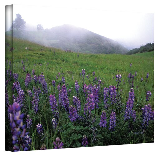 Art Wall ''Figueroa Mountain with Fog'' by Kathy Yates Photographic Print on Canvas