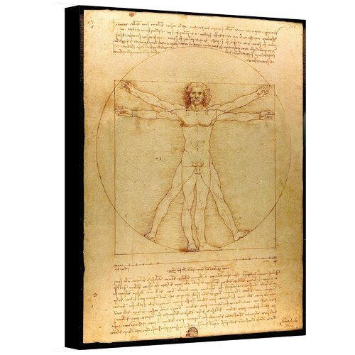 Art Wall ''Vitruvian Man'' by Leonardo Da Vinci Painting Print on Canvas