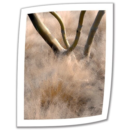 Art Wall 'Desert Grasses' by Linda Parker Photographic Print on Canvas