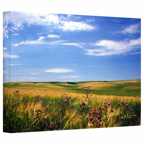 Art Wall 'Field of Dreams' by Kathy Yates Photographic Print on Canvas