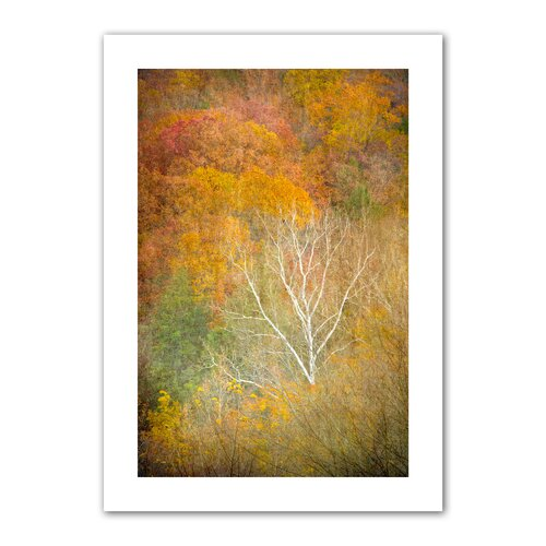 Art Wall 'In Autumn' by David Liam Kyle Photographic Print on Canvas