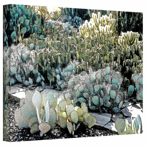 Art Wall 'Desert Botanical Garden' by Linda Parker Photographic Print on Canvas
