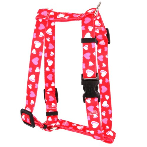 Red Hearts Roman Harness