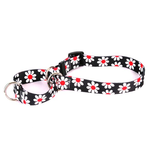 Yellow Dog Design Black Daisy Martingale Collar