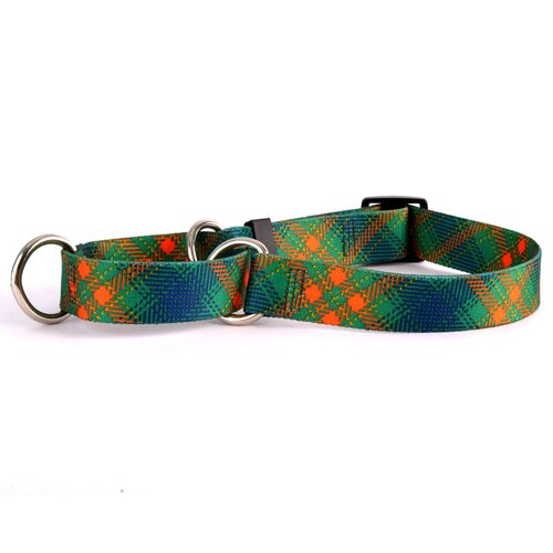 Yellow Dog Design Green Kilt Martingale Collar