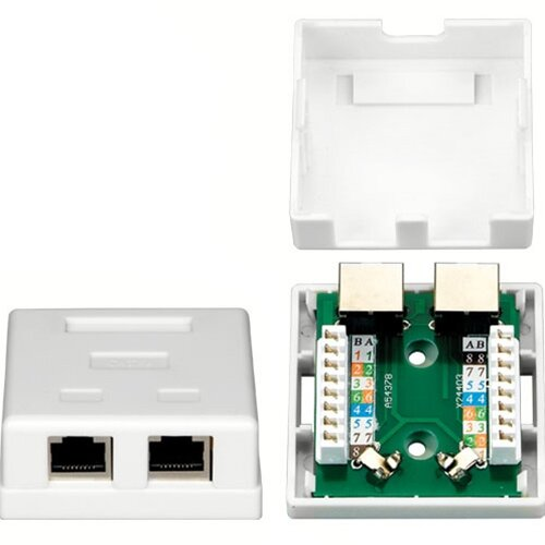 TechTent Two RJ45 Shielded Keystone Jacks Surface Mount Box